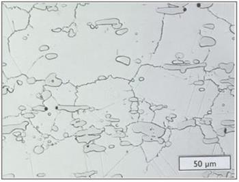 Microstructure - 6B wrought plate